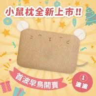 12/6-12/9✦全新上市✦【單枕套組】cani airwave護頭枕(小鼠正面款)